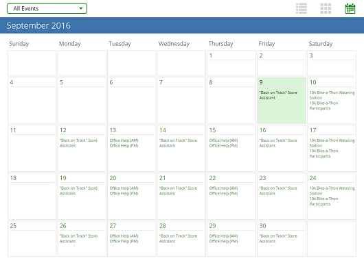 VolunteerHub's user interface calendar view