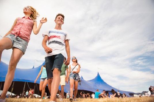 festival volunteer management