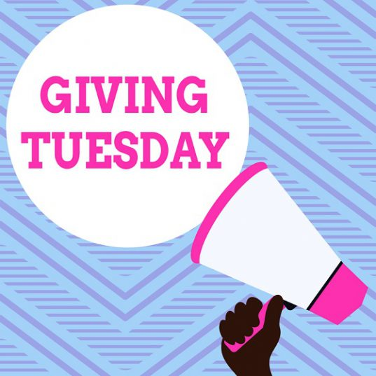 Giving Tuesday Strategy